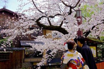 Rue Gion Shirakawa à Kyoto