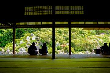 Jardin du Temple Chishaku-in, Kyoto