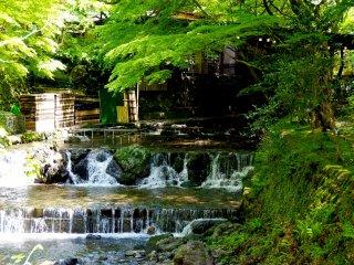 สายน้ำใสๆ ของแม่น้ำคิบุเนะ (Kibune)