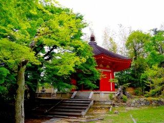 Sala Aizen-do, a meio caminho da Sala Kaizan-do