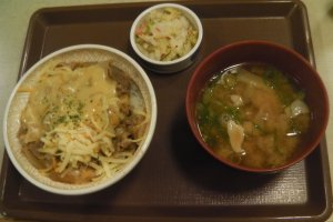 Gyudon with cheese, with a bowl of miso soup