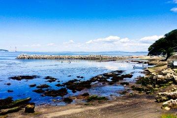 Cape Tsurugi Coastal Walk