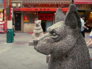 A dog statue in the main street.