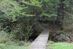 A short bridge crossing a river along the way.