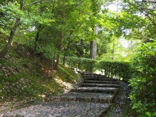 ในช่วงแรกสวนนาริตะ-ซานดูเหมือนเขาวงกตสีเขียวขนาดใหญ่ ในสวนมีเส้นทางเดินคดเคี้ยววกวน และบันไดอยู่ทั่วทุกหนแห่ง