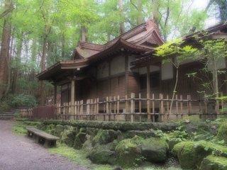 โรงน้ำชาท่ามกลางแมกไม้