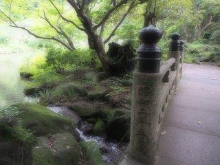สะพานข้ามธารน้ำเล็กๆ ซึ่งไหลลงสู่สระน้ำ