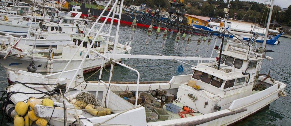 Yobuko Harbor