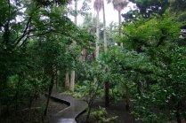 สวน Samuel Cocking ที่เอะโนะชิมะ