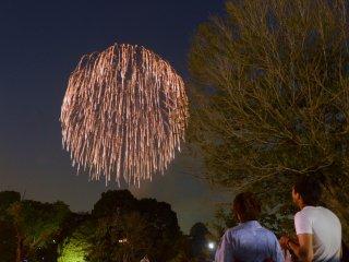 Happé par la beauté du spectacle, un couple en arrêt devant le feu d'artifice, qui retombe en une pluie d'étincelles.