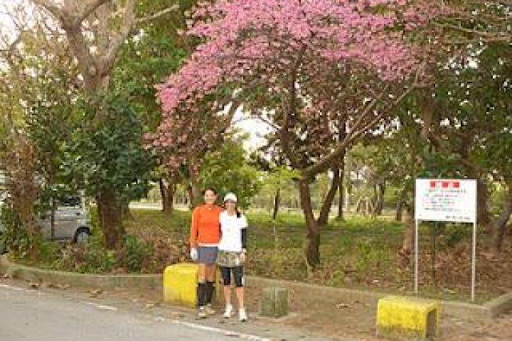 Nago Half Marathon