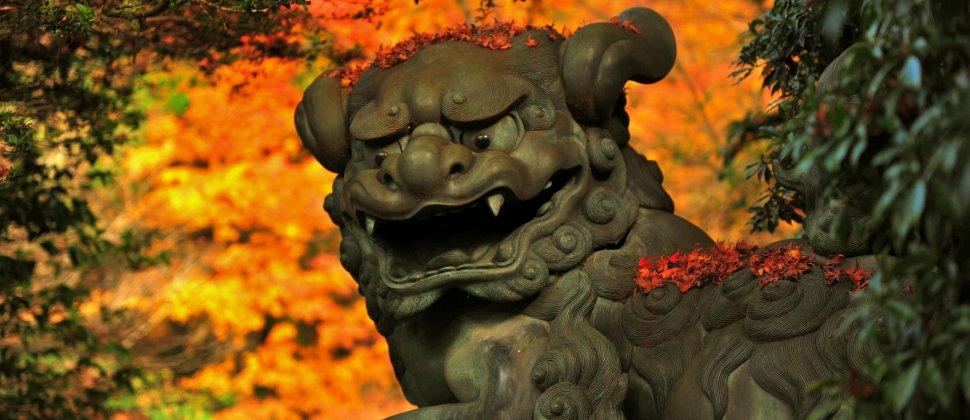 御神徳高き開運の神社 箱根神社