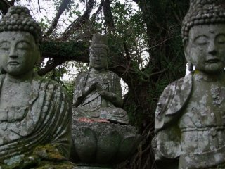 Ancient histories and Buddhist lore are buried in these mountains.