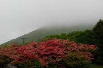 Mount Esan and Todohokke