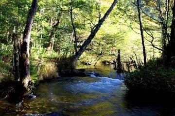 Kamikochi: Mendaki sepanjang Sungai Azusa