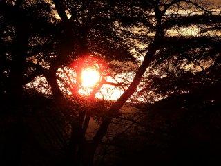 祈りの道から眺める燃えるような夕陽