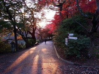 西山公園の祈りの道で、美しい秋の一日が終わろうとしている