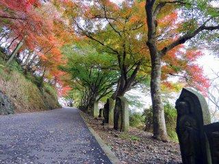 祈りの道を彩るカラフルな紅葉