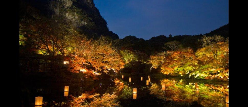 Mt. Mifune Autumn Light-up