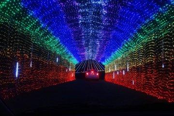 熊本一美しいクリスマスイルミネーション