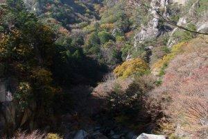 Enjoy the beauty of Yamanashi Prefecture