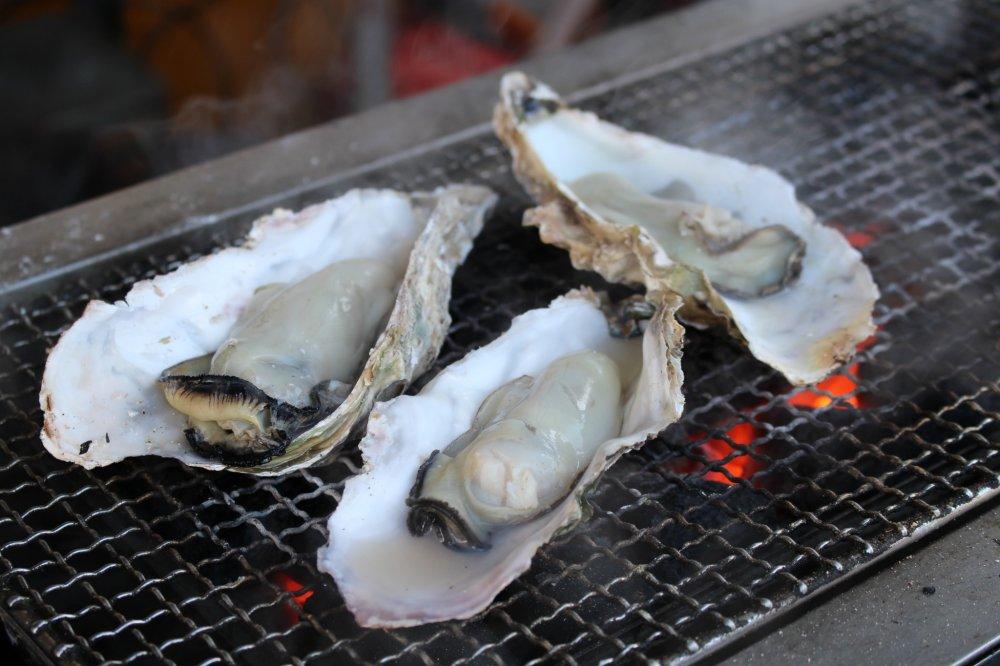 Những chú hàu nướng bên ngoài chợ cá Shiogama