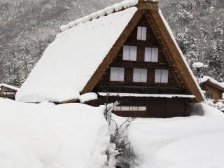 '갓쇼즈쿠리'라고 알려진 전통 가옥 모양을 그대로 갖고 있는 시라카와고. 이 전통 가옥의 건축과 디자인은 겨울 내내 겪는 폭설에 잘 견딜 수 있게끔 설계되어 있다.