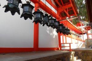 Les lanternes bordent les bâtiments rouges du sanctuaire