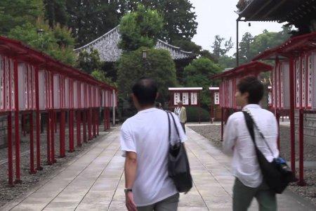 오키나와, 도교와 나리타를 방문하다