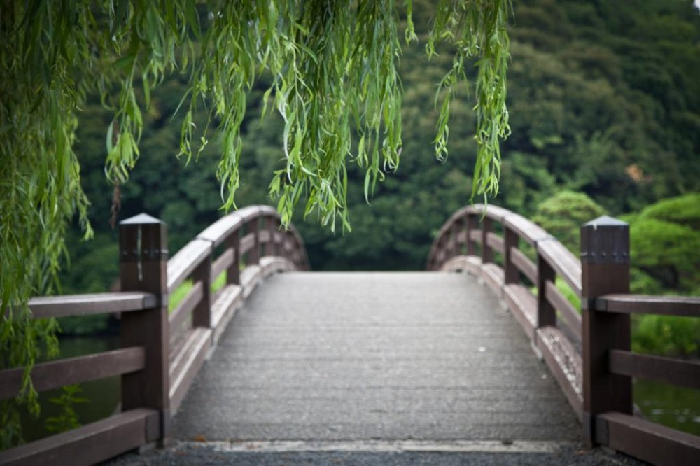 A bridge stretching over the water in the traditional Japanese garden