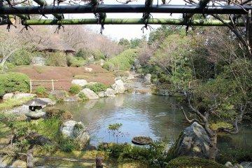 京都・妙心寺「退蔵院庭園」