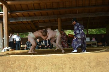 Cuộc đấu Sumo không chuyên ở Tohoku