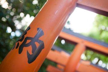 Le Parc de Ueno en Vidéo