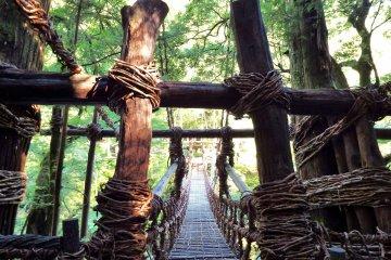 Le Pont Iya no Kazurabashi de Shikoku