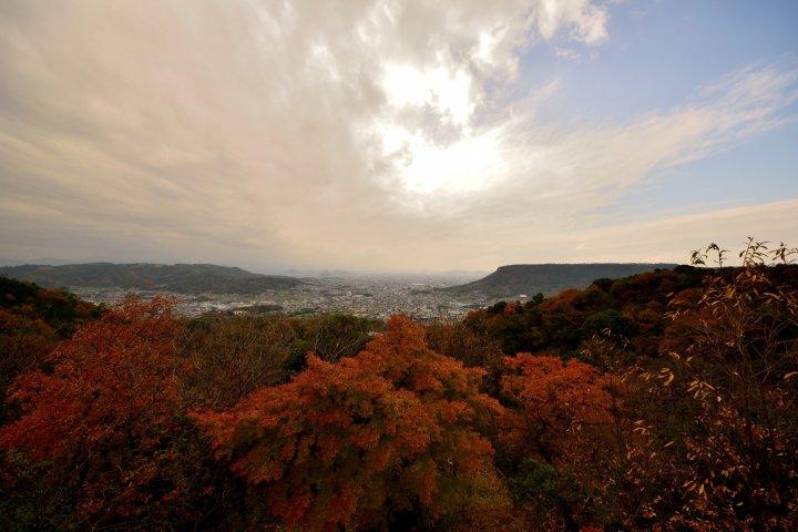 Shikoku Temple #85: Yakuriji
