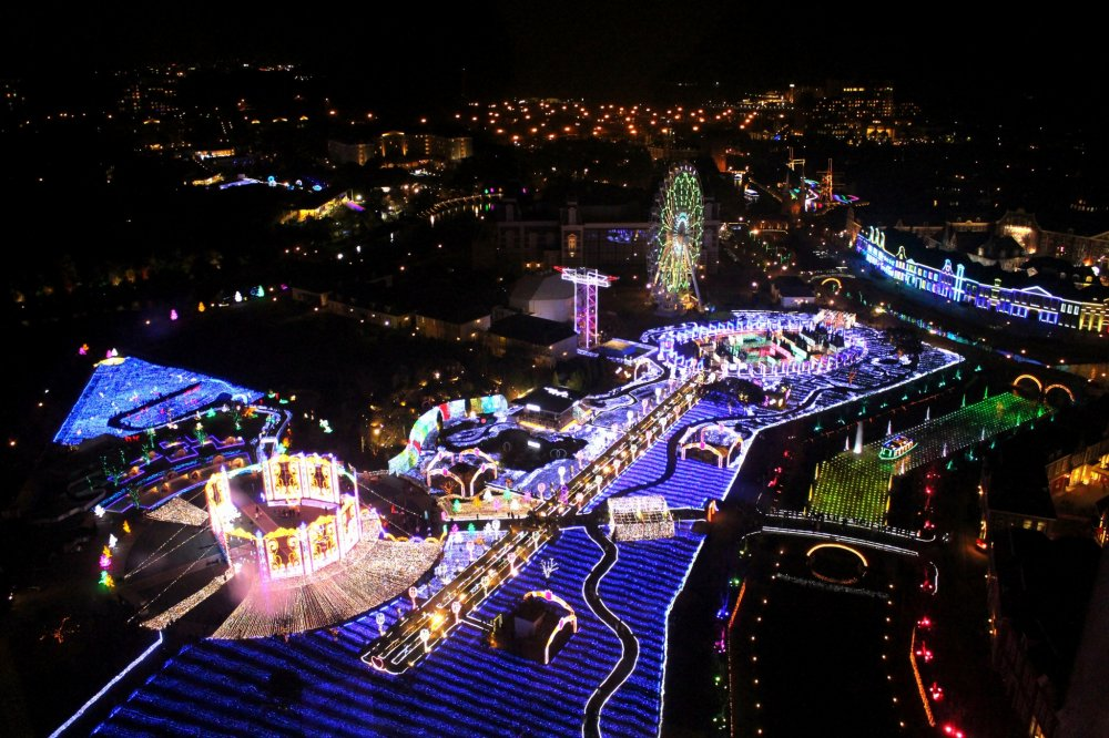 "This is the ''Kingdom of Flowers & Lights""!"