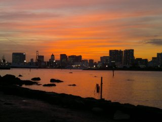 Remarkable blend of orange, pink, and purple, all at once. Best sunset view I've ever seen in Tokyo.