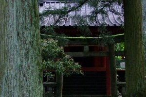 Tochigi is rich in cultural beauty, and the glory of nature