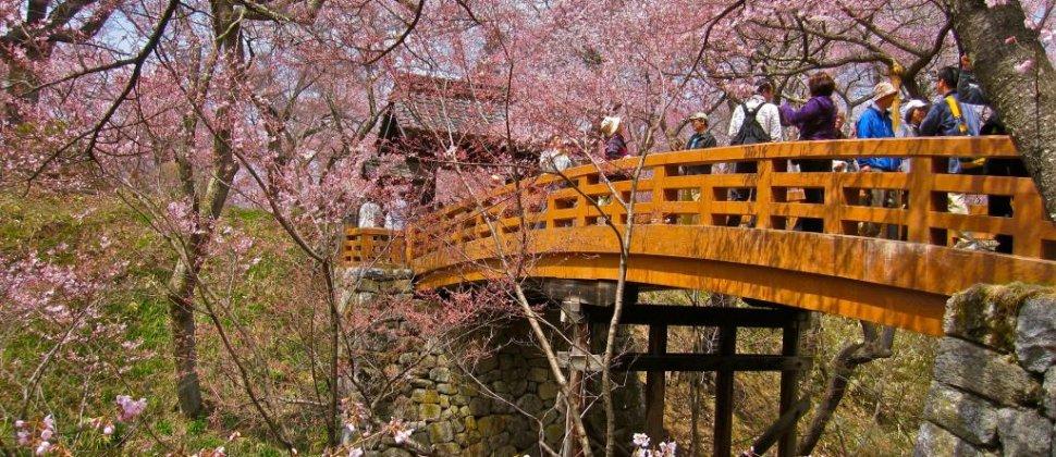 Taman Reruntuhan Kastil Takato
