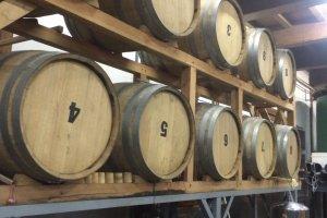 Wine barrels in one of the sake factories on Nanokamachi Street.