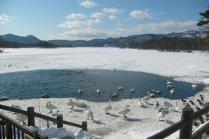 Inverno no Lago Onuma