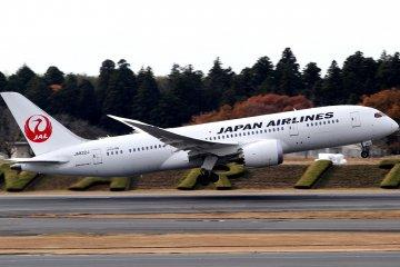 Fly JAL Sydney to Tokyo