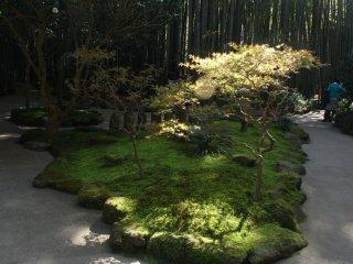 Sudut lain dari taman Hokokuji