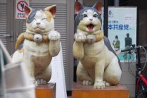 Tokyo Train Tunes Episode 3 – Nippori