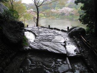 빗속의 돌