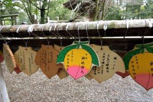 Izanagi Jingu Shrine