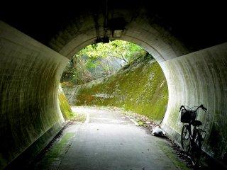 Tunnel under the motorway