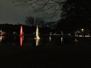 Les jets d'eau de nuit : variation de couleurs