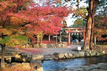 ศาลเจ้าคะมิคะโมะแห่งแม่น้ำคะโมะ
