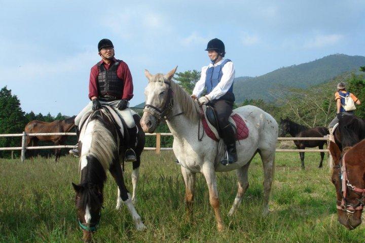Kirishima Art Ranch and Horse Trust